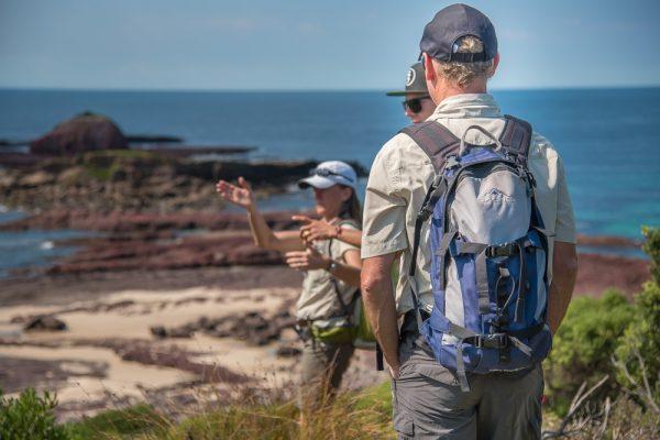 sapphire coast ben boyd national park hiking gang gang tours eco australia