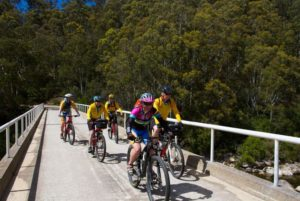 5 riders on bridge in national park