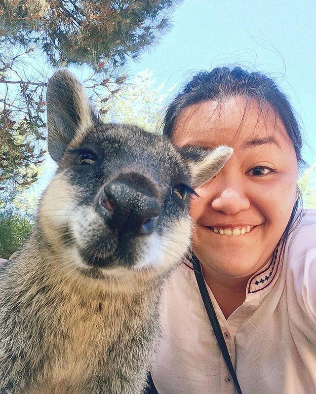 close-up of young woman with wallaby in selfie