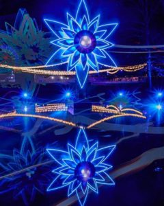 bright blue star shaped light display at Floriade reflected in water