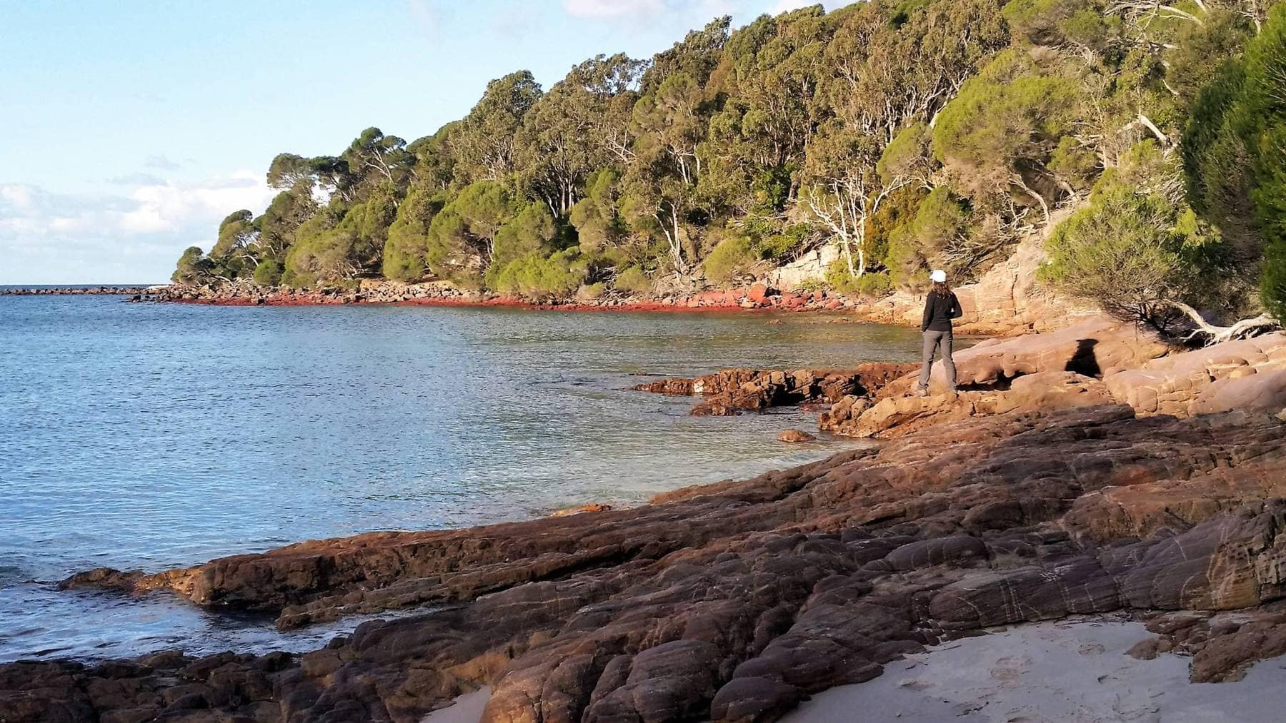 woman standing on rocky foreshore of small bay with tea tree forest