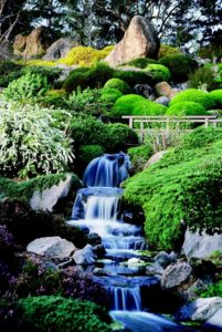 cascading waterfall through rocks and foliage at the japanese gardens in cowra