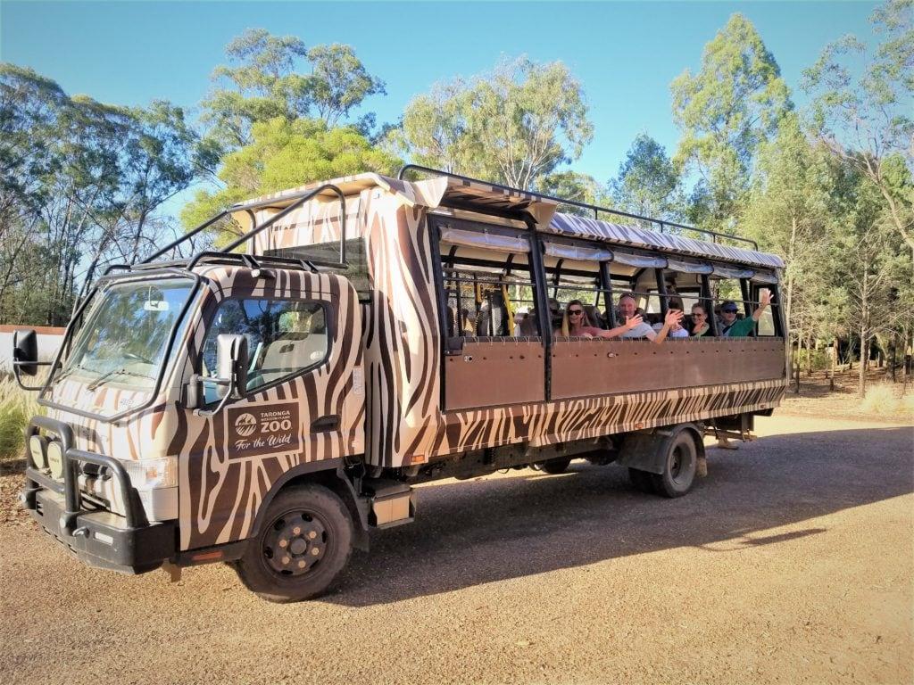 people sitting on an open window safari truck with zebra stripes