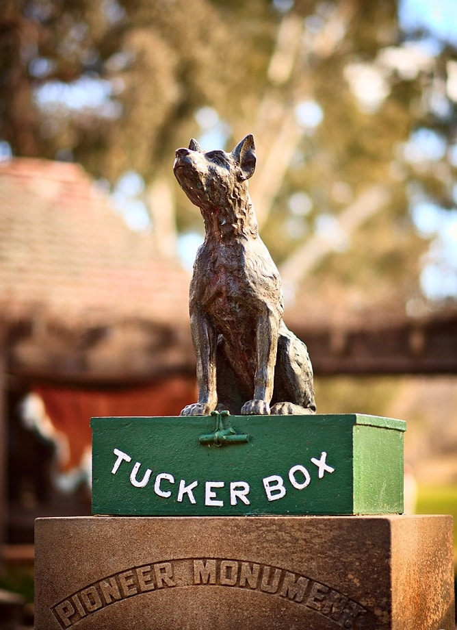 statue of dog on a tuckerbox